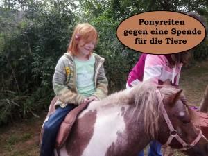 Lichtenborn Ponyreiten