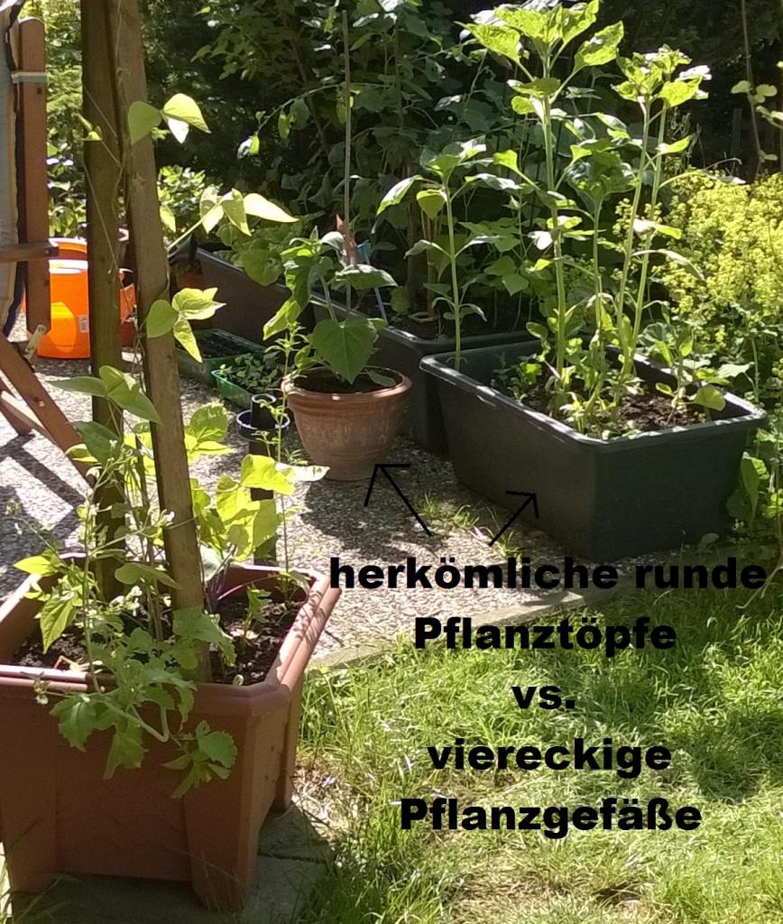 pflanzgefäße platz